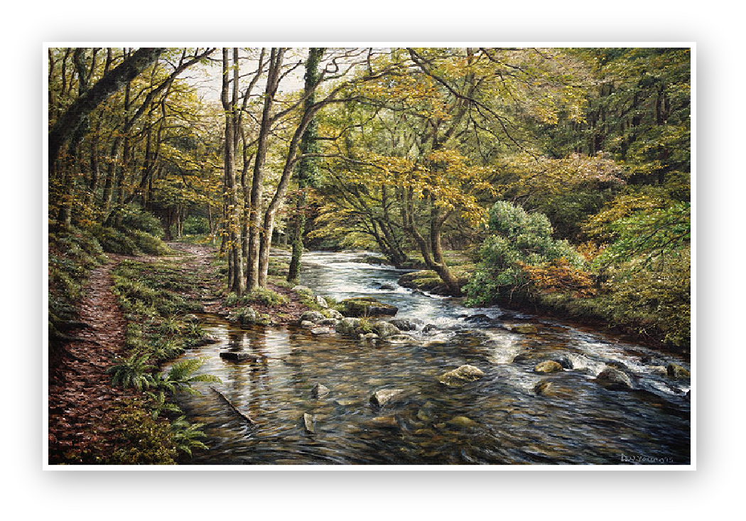 East Okement River near Okehampton painting by David William Young