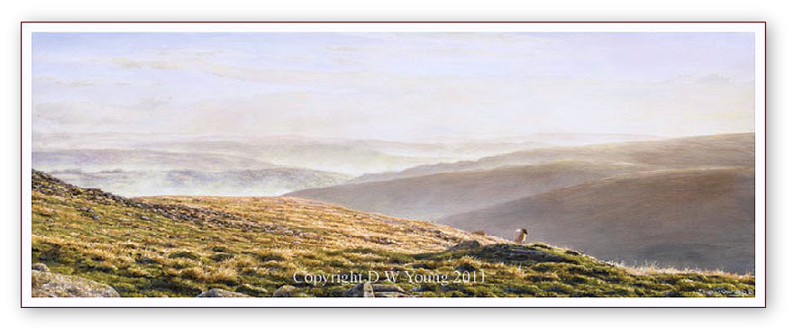 Valley Mists, Belstone, Dartmoor print enlargement