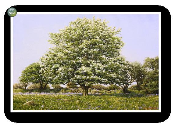 David Young painter