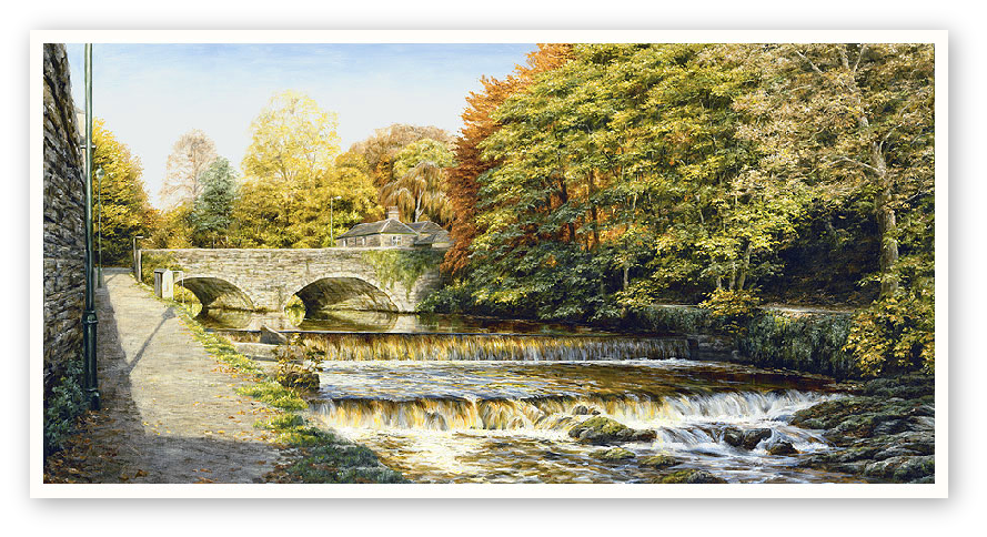 Abbey Bridge, Tavistock Weir, Devon print enlargement