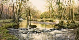 prints the river walkham near double waters david young paintings