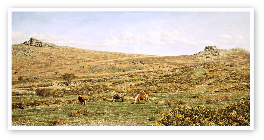 Hay Tor paintings , Dartmoor print enlargement