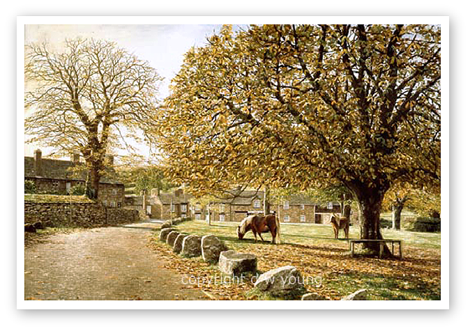 Widecombe-in-the-Moor, Dartmoor print enlargement
